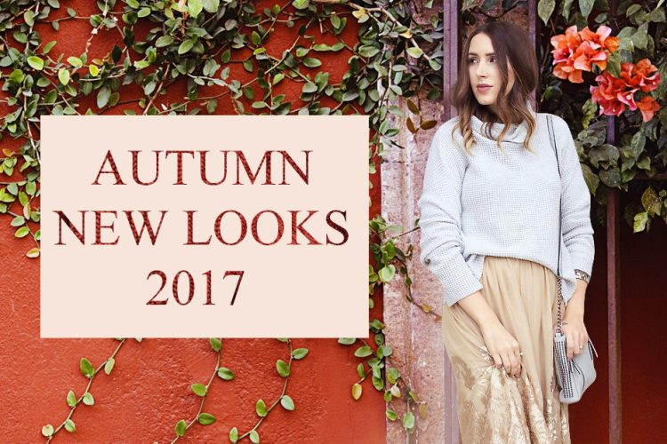 2017 autumn women fashion look